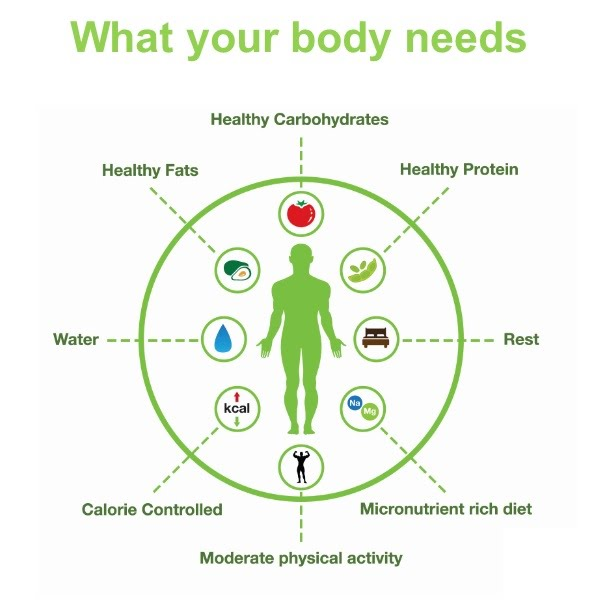 What your body needs… Healthy Carbohydrates, Healthy Protein, Healthy Fats, Water. Micronutrient Rich Diet, Calorie Controlled, Moderate Physical Activity, and Rest